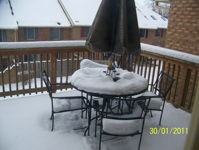 Snow on the deck