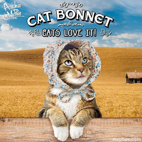 cat-bonnet-tabby_650x