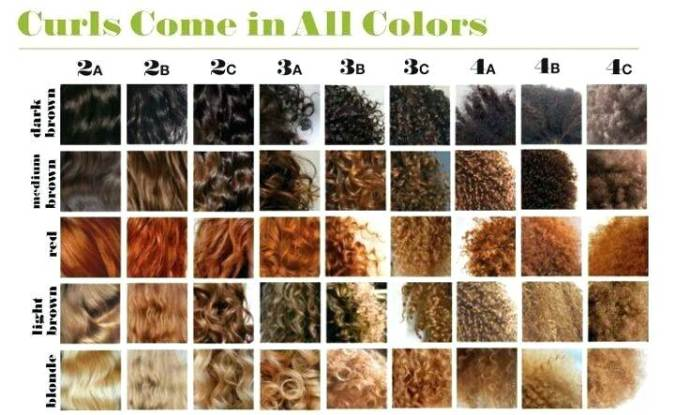 why-the-natural-hair-type-chart-is-flawed-typing-confusion-controversy-texture-types.jpg